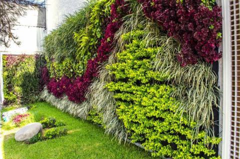 Muros verdes trabis for Jardines verdes
